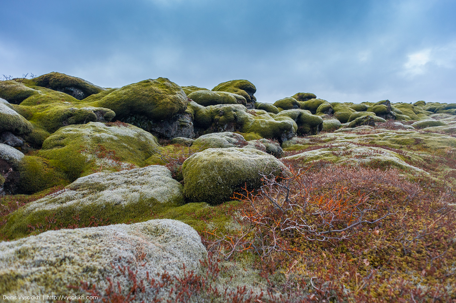 Eldhraun - лавовое поле, поросшее исландским мхом Fjallagrös.