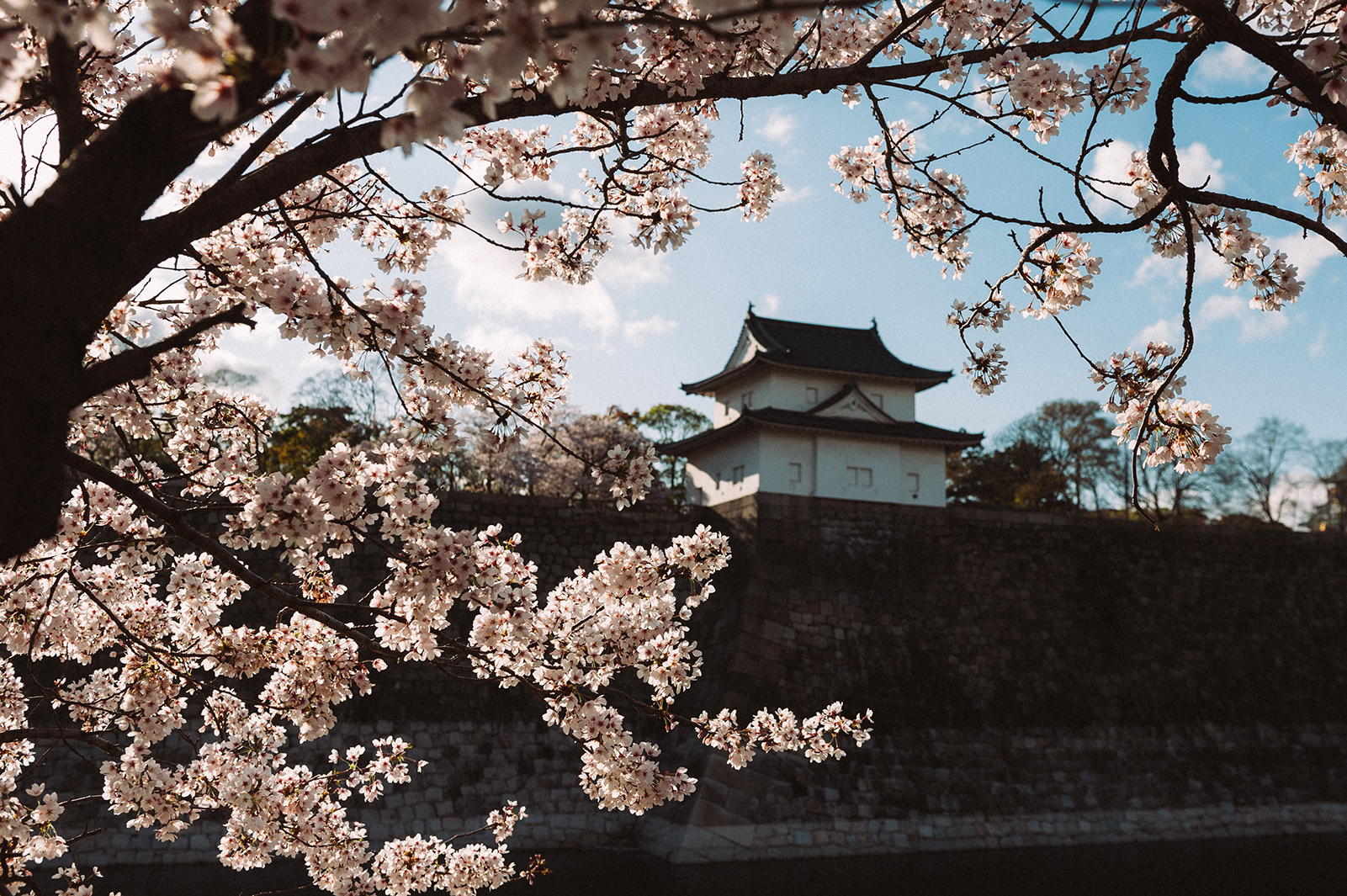 Замок Осака (Осакадзё)